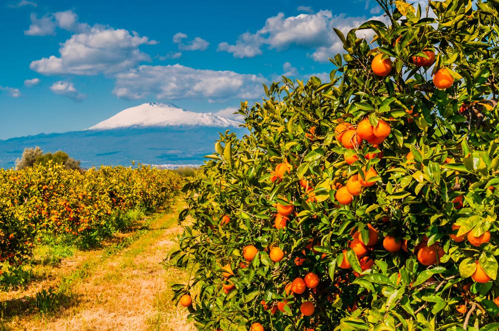 crystal-sea-hotel-marina-agro-taormina-Dolce-vita-Holiday-Sicily-etna